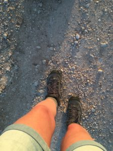 Natuurcoaching Wandelcoach Schrijvend wandelen